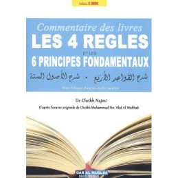 Commentaire des 4 règles et des 6 principes fondamentaux