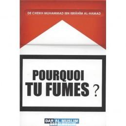Pourquoi tu fume ?